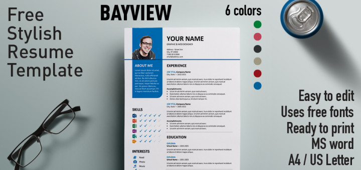 Bayview stylish resume template bayview free resume template microsoft word yelopaper Choice Image